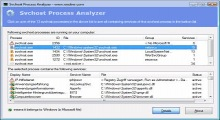 Svchost Process Analyzer