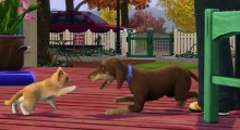 Les Sims 3 - Animaux & Cie